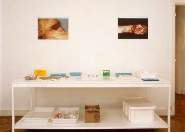 Installation table médicale When logics die de Damien Hirst